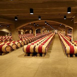 Robert Mondavi- Barrel Room 2